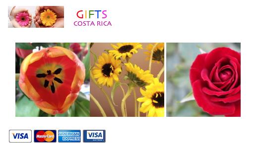 floresdelmundo Costa Rica